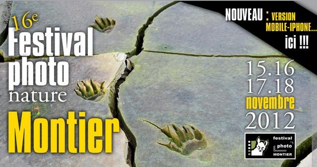 montier-2012