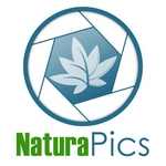 logo naturapics 150 high