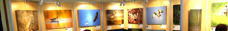 Festival de Montier 2013 – Expo et Portfolio ASCPF